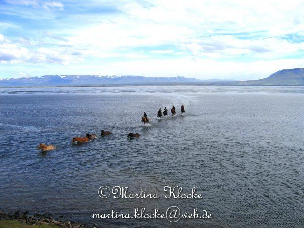 Reiten in Island: Eindrücke, die man nie vergisst...